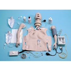 Replacement Lungs for Resusci® Anne™ Manikins