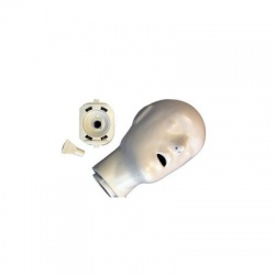 Adult/Child Head Assembly - Blue Manikin