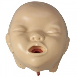 BABY ANNE - INFANT / BABY MANIKIN FACES - 6 PER PACK