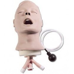 Airway Larry Adult Airway Management Trainer Head