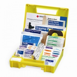 Auto First Aid Kit, 138 Pieces - Large Case of 12 @ $18.40 ea.