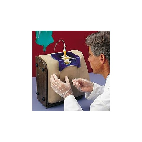 Life/form® Spinal Injection Simulator Replacement Kit