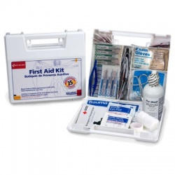 Large, 25 Person Bulk First Aid Kit/Case of 10 $21.80 ea.